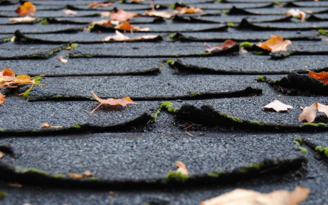 Curled shingles are signs you need a new roof