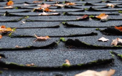 Signs You Need a New Roof